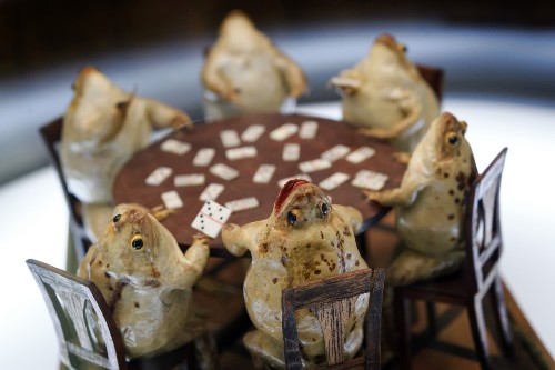 The Unique Museum of Stuffed Frogs in Switzerland: Pictures