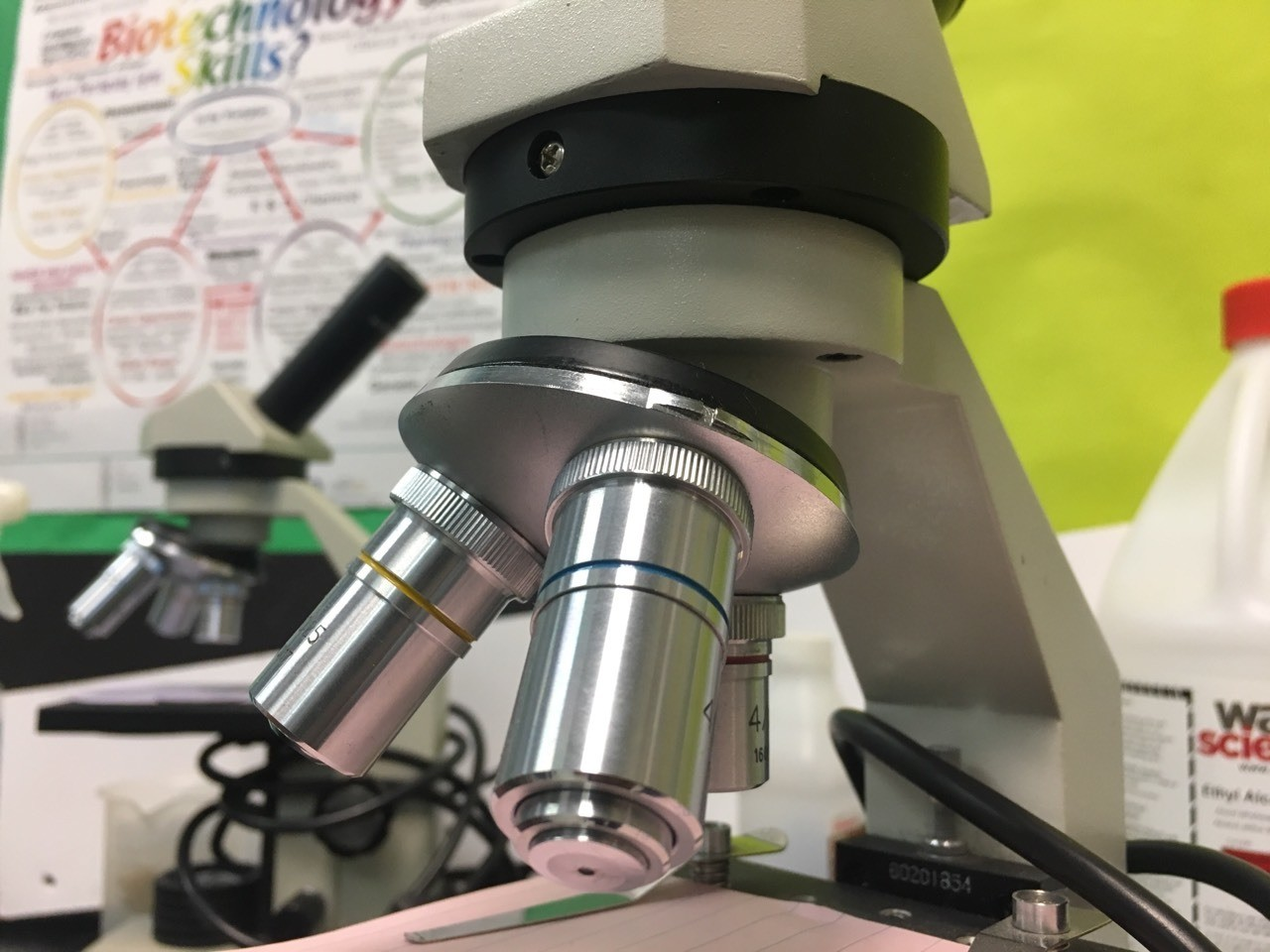I would add this to new learning particularly because it was quite interesting to become knowledgeable about the parts of a microscope. It was unique and fascinating as I would see more and more from swiveling, tilting and turning the microscope.