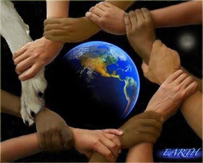 Harmony with Creation Help clean th environment Don't litter Dont waste water Less pollution in the air (dont drive) We are all different but we all have a purpose to protect the earth and restore power and safety and stop global warming.
