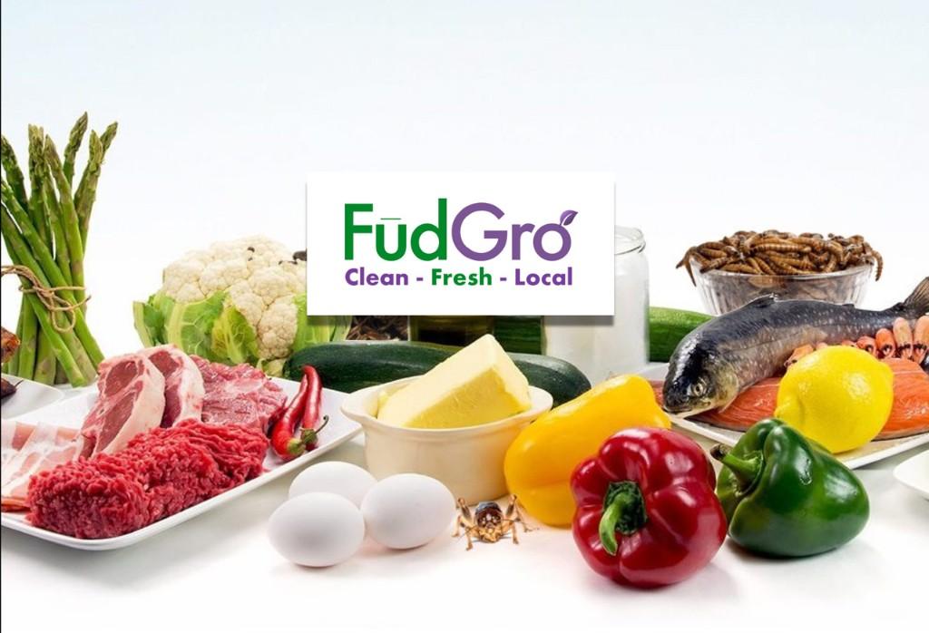 FudGro.com - Magazine cover