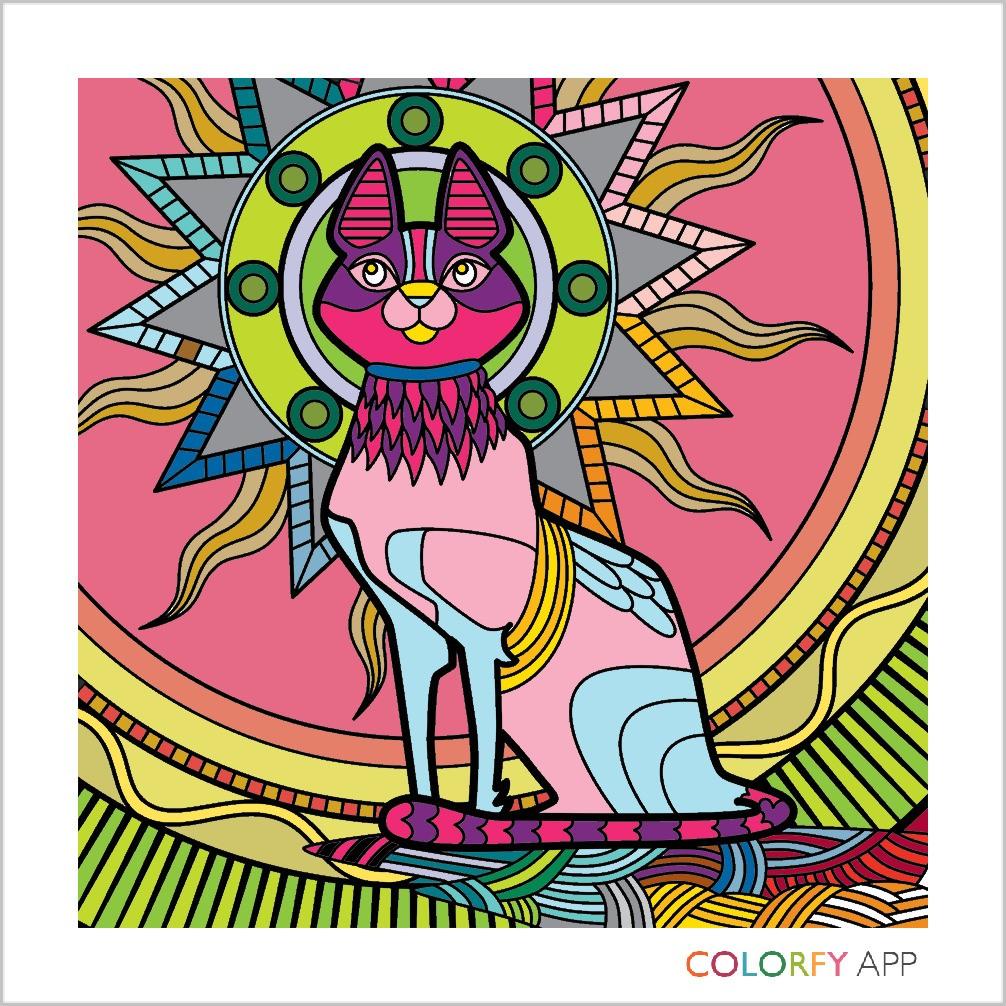 COLORFY - Magazine cover