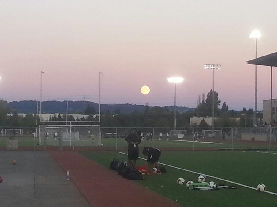 Wow Big Moon!