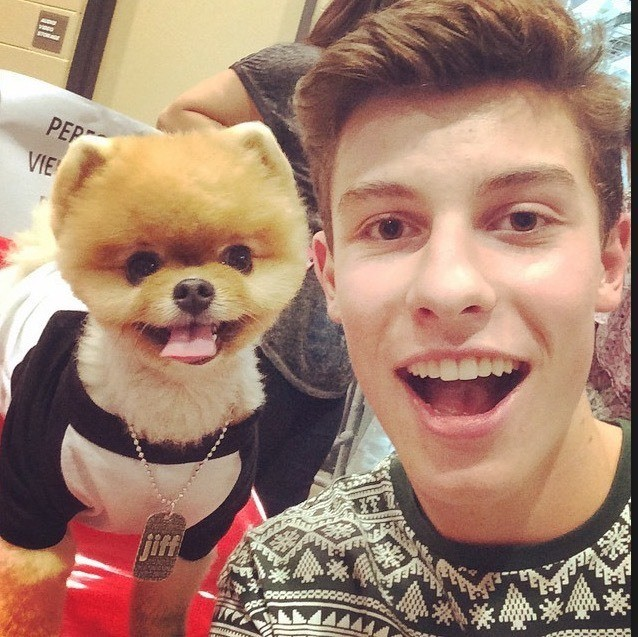 SHAWN MENDES ;) - cover