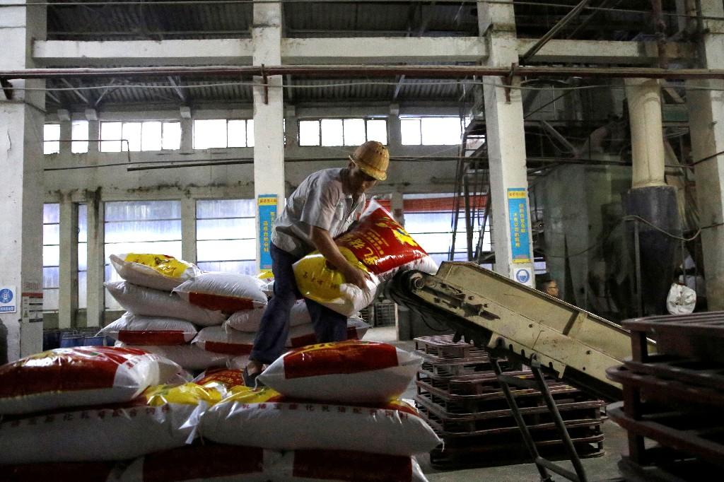 Pandemia reduce en una décima parte ingresos del trabajo en todo el mundo: OIT