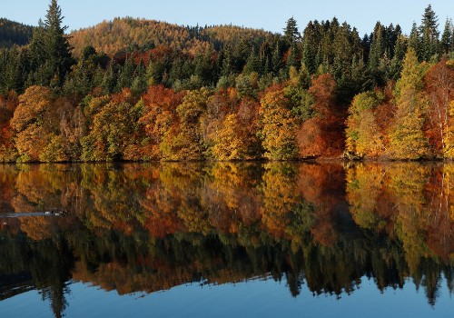 The Splendor of Fall Foliage in Pictures