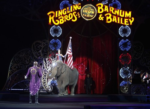Final Shows for Barnum and Bailey's Elephants: Pictures