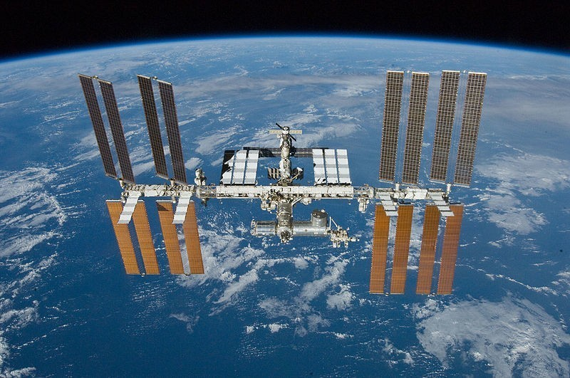 This Common Microbe Grows Better in Space than on Earth