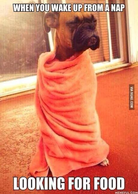What my children look like in the mornings