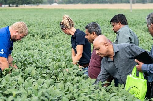 U.S. farmers scramble to contain trade-war damage, find new markets