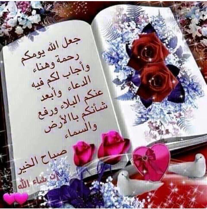 السلام يسود العلم cover image