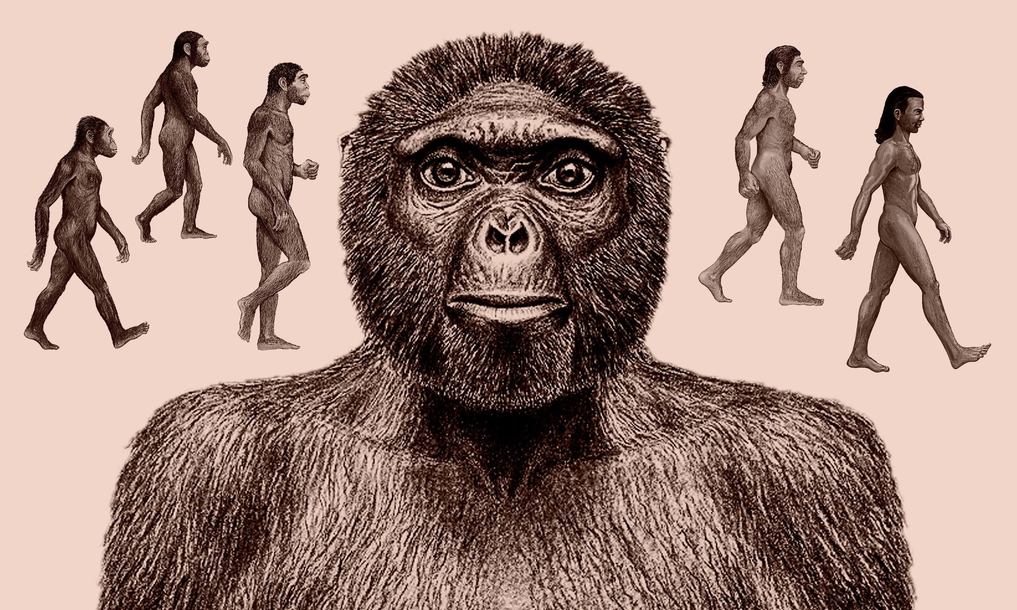 Tracing the tangled tracks of humankind's evolutionary journey