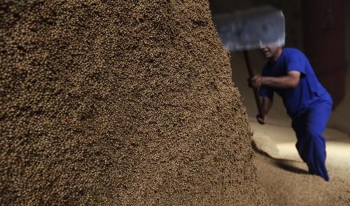 AEB vê queda nos preços das commodities do Brasil em 2019; soja lidera exportação