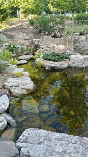 Turtle Pond Built At The Gwinnett Heritage And Environmental Center For Pond Stars Buford, GA - cover
