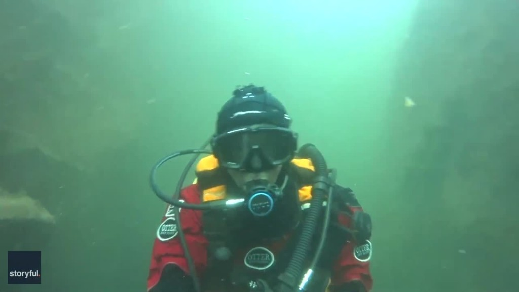 Seal Gets Up Close and Personal With Diver Off English Coast