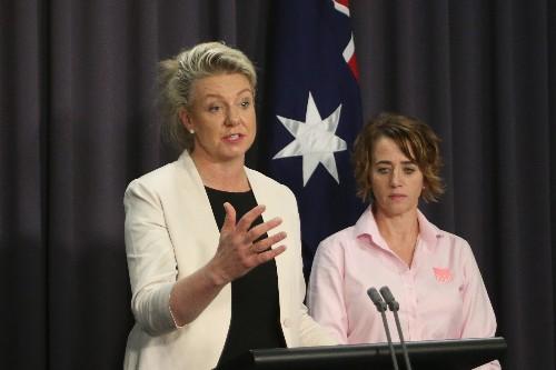 Australia deports woman to Vietnam over smuggled pork