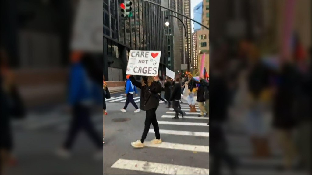 Driver arrested after car plows into protesters