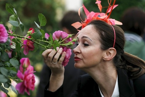 Why Do Most Languages Have So Few Words for Smells?