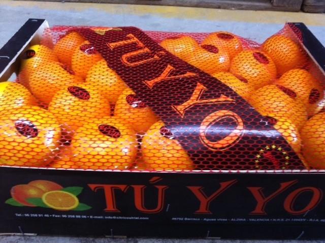 Marca : TU Y YO Producto : Mandarina CAT.EXTRA VARIEDAD : Satsuma - Owari Origen : Valencia ( España ) Web : www.citricosfrial.com