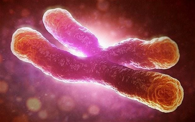 New test can predict cancer up to 13 years before disease develops
