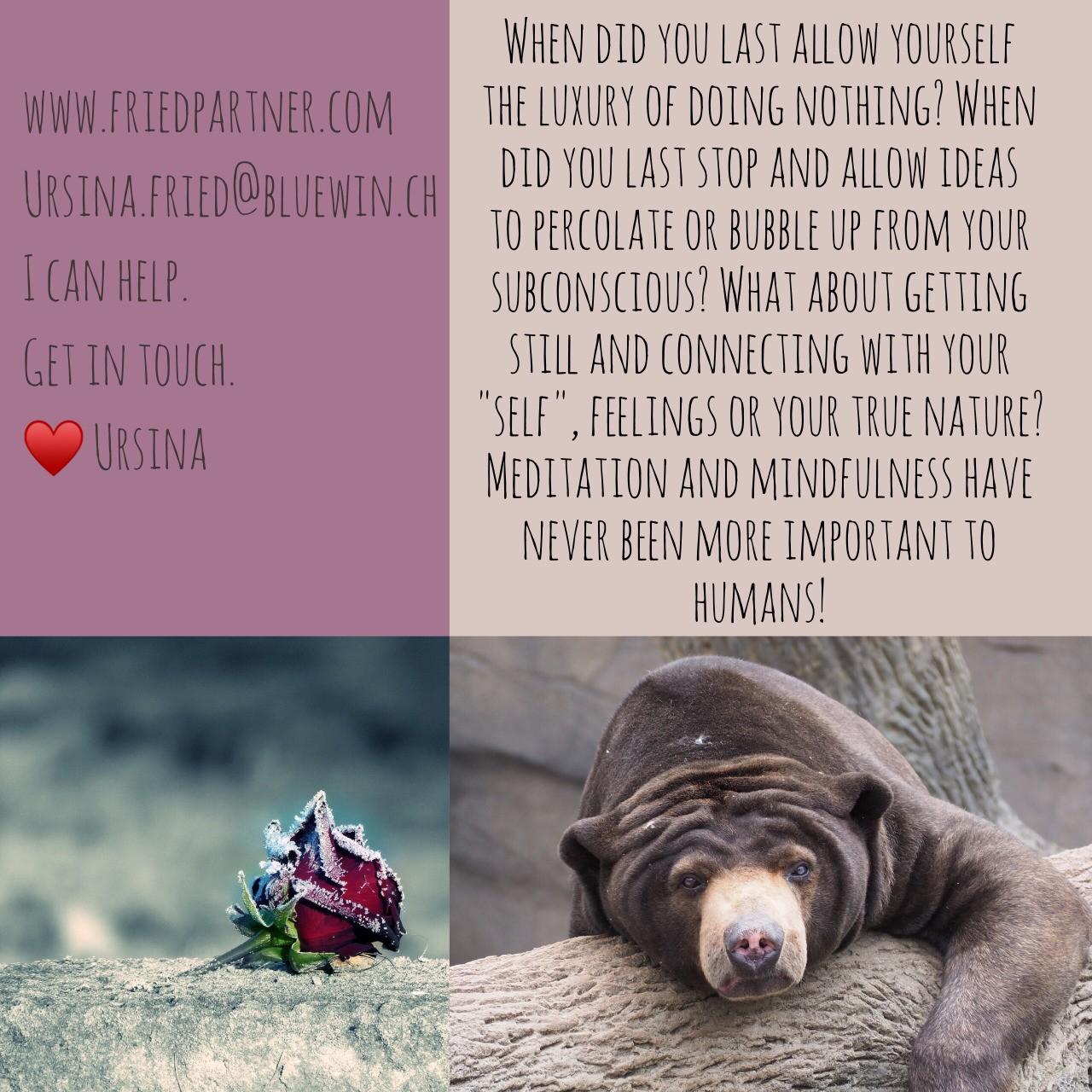 Wann hast du dir das gegönnt? Wann durfte dein Unbewusstes mehr für dich tun? Hypnose und Coaching können dir helfen, diese Selfcare Fenster zu finden und zu nutzen. ❤️ Ursina #coaching #changeisgood #transformation #nlpmaster #hypnoses #shamanichealing