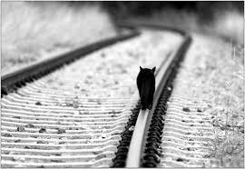 عدت إليك عالمي وحيدا كما كنت ولكن هذه المره بعد وفاة قلبي