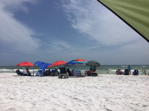 Florida Panhandle & Forgotten Coast cover image
