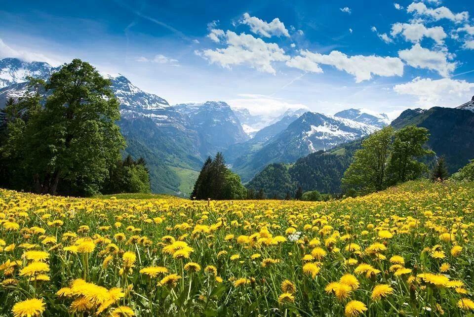 Switzerland [∆]