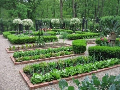 Hardscaping 101: Edible Gardens