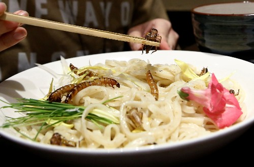 A dash of bugs with that? Insect-topped noodles sell out in Tokyo