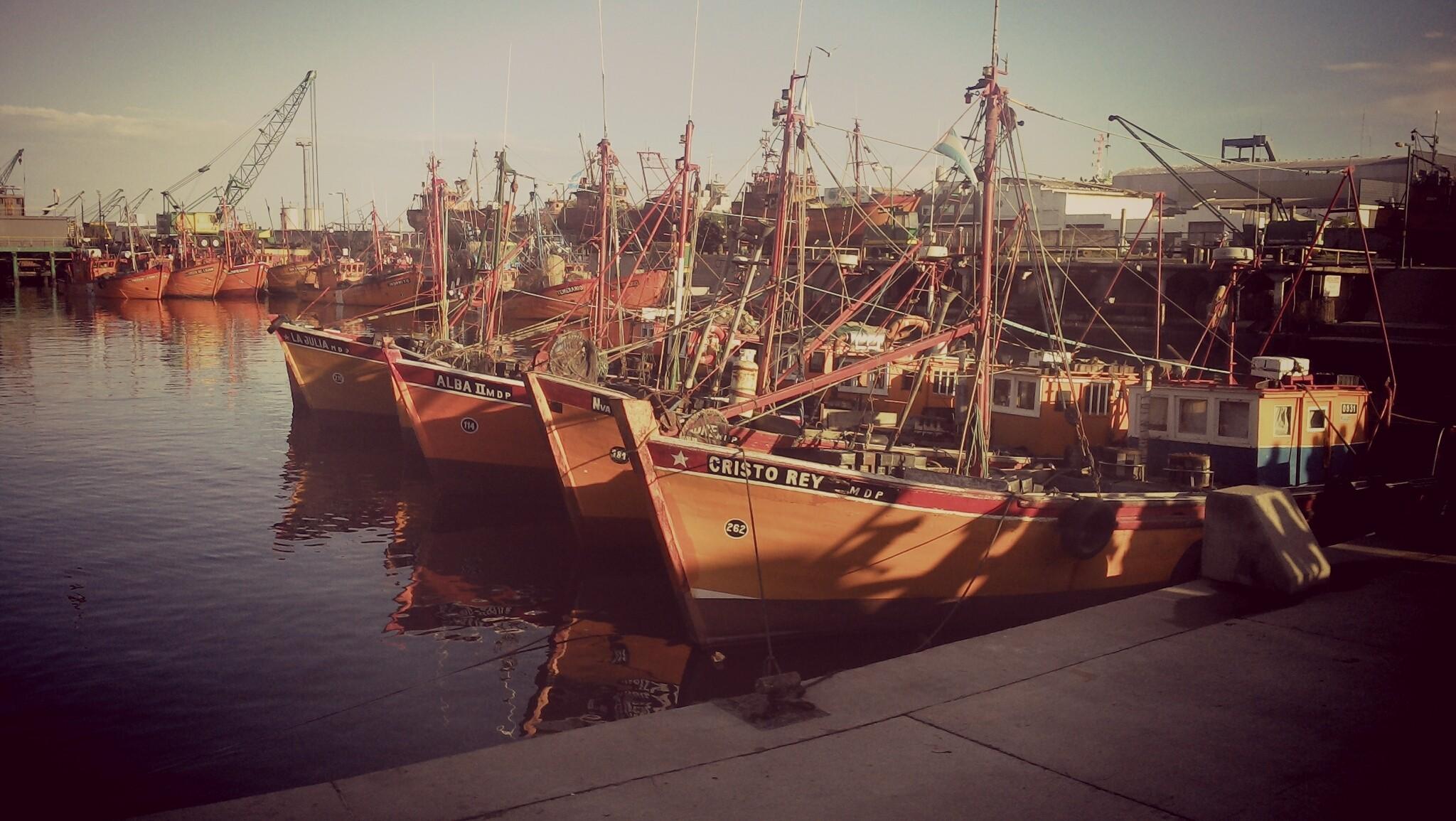 Docks- Mar Del Plata