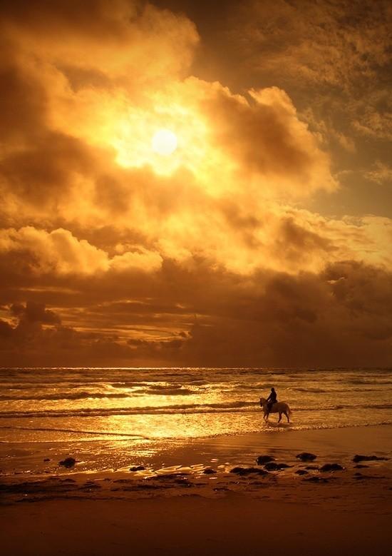 Beautiful sunset at ocean