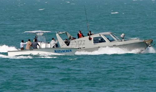 Fishing vessels pushing vaquita porpoise to extinction: U.N. treaty head