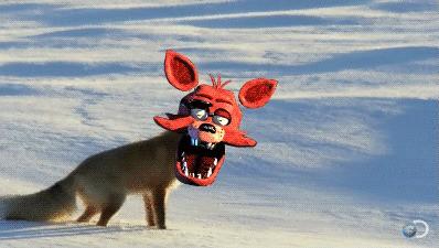 RLY FOXY UR NOT AN OSTRIGE