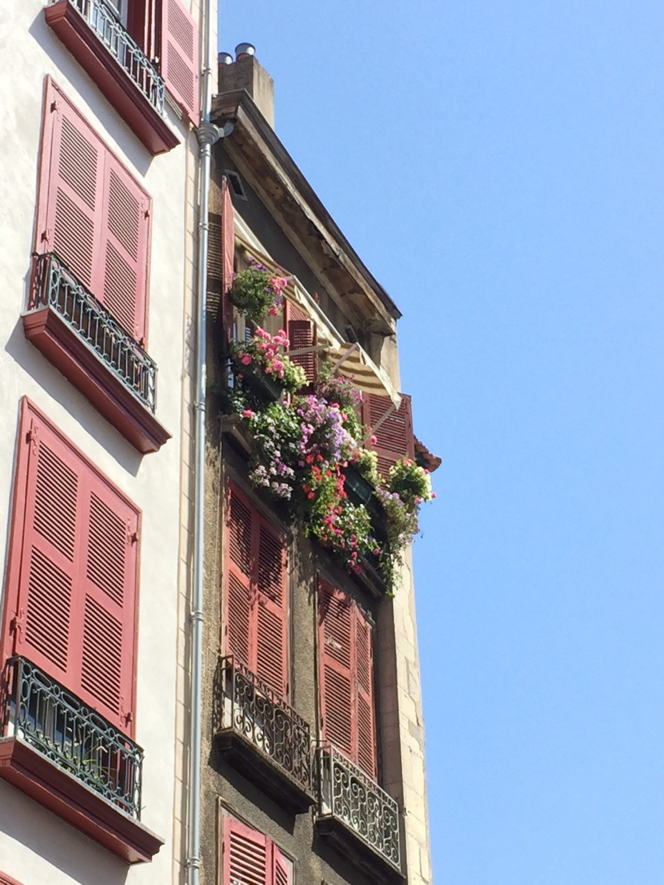 Balcons fleuris et canal de Bayonne.