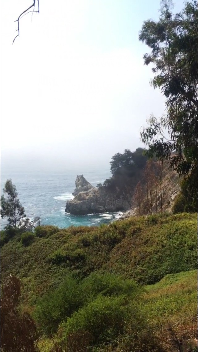 another picture from my trip along the California coast