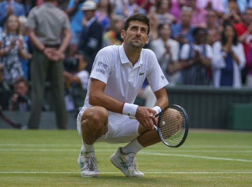 Tennis: Lack of love fuels Djokovic desire to be top dog