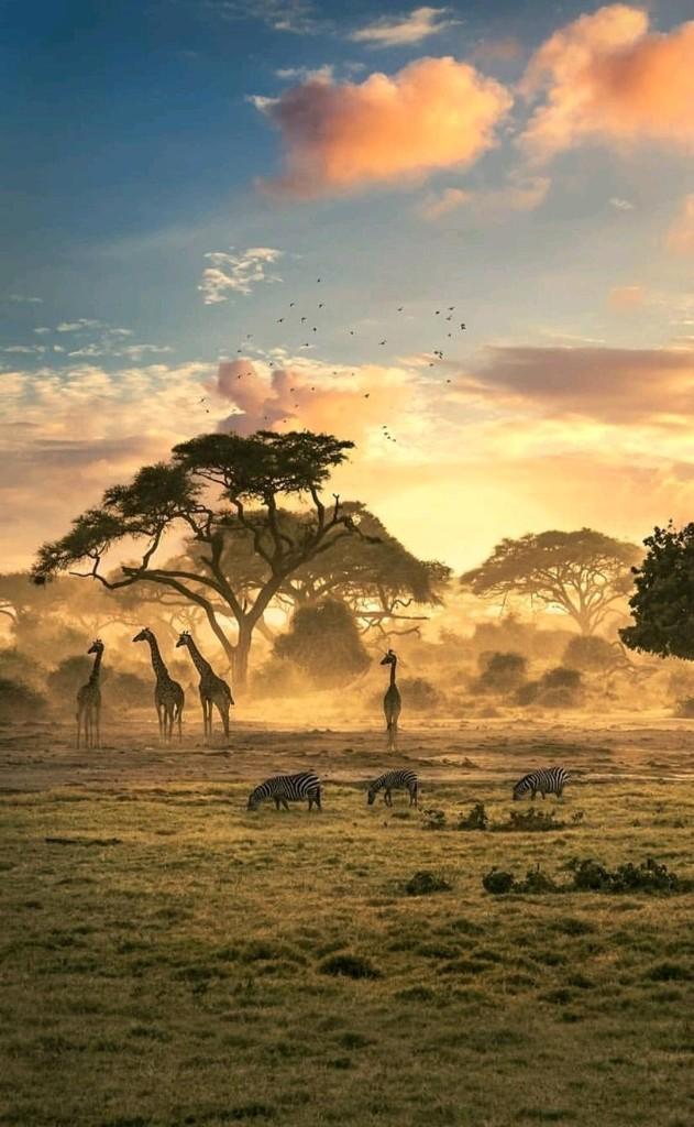 Wonderful World cover image