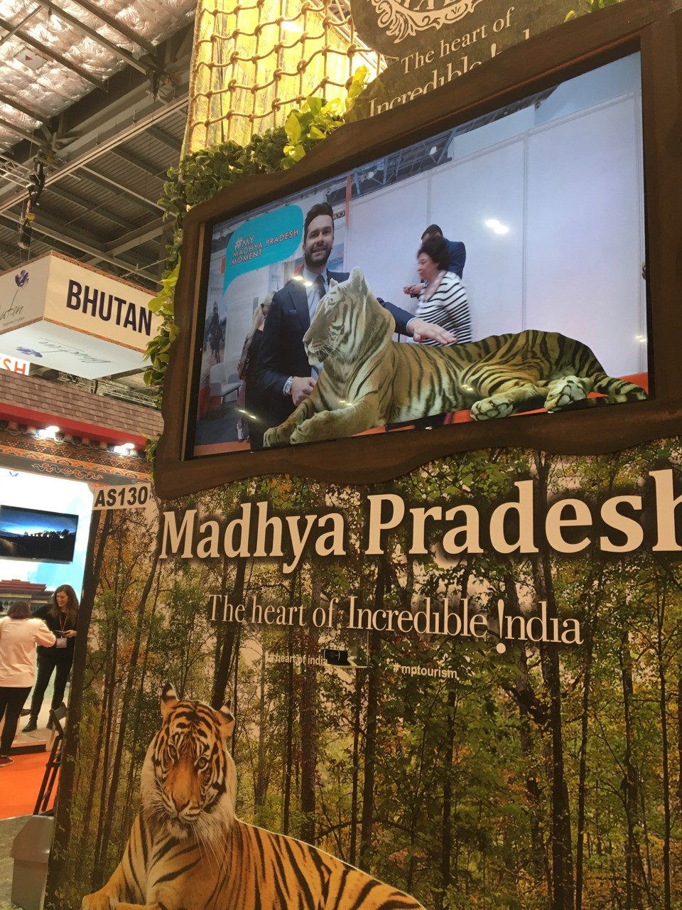 Spending some quality time with a docile tiger at the World Travel Market in London. It remained calm throughout my pitch.