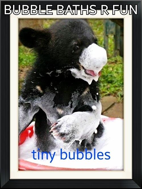 Bubbles the Bear - Magazine cover