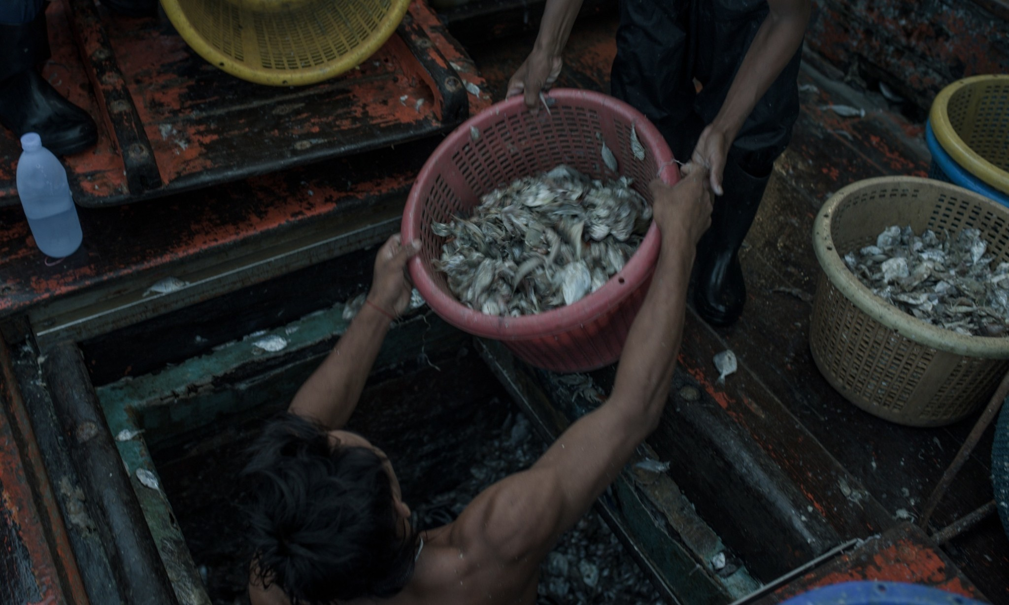 Revealed: how the Thai fishing industry trafficks, imprisons and enslaves