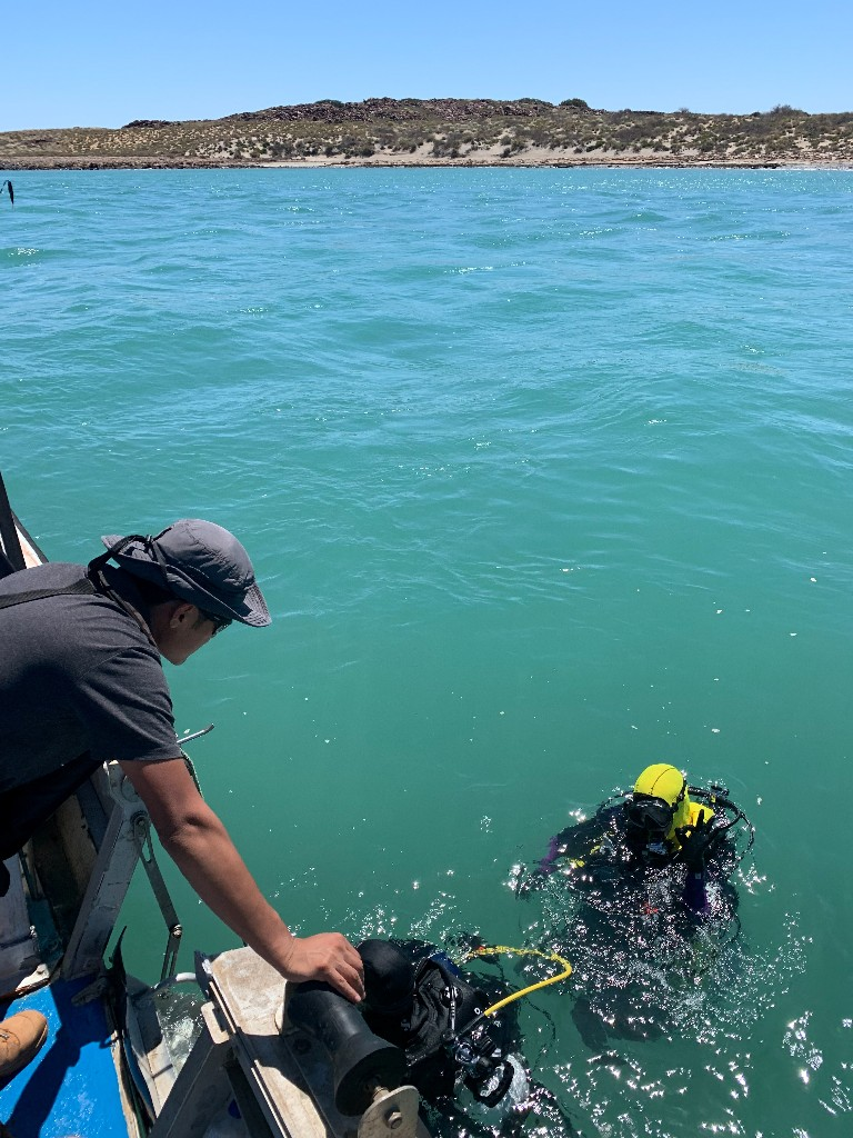 Australian scientists discover ancient underwater Aboriginal sites
