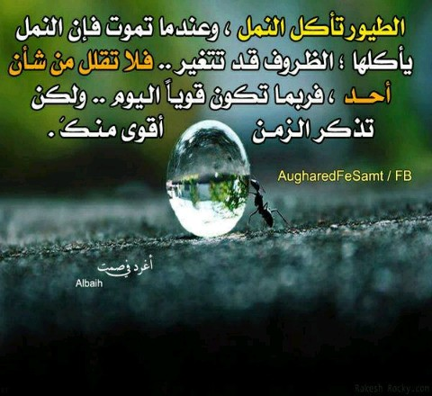 كلام حزين - Magazine cover