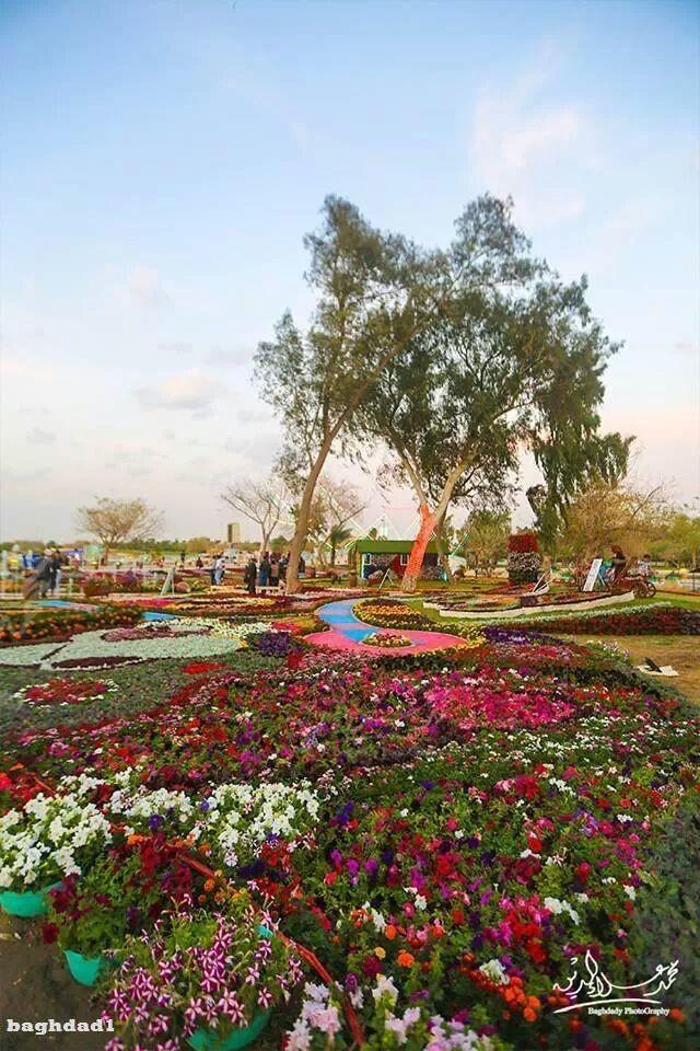 مهرجان الزهور في متنزه الزوراء