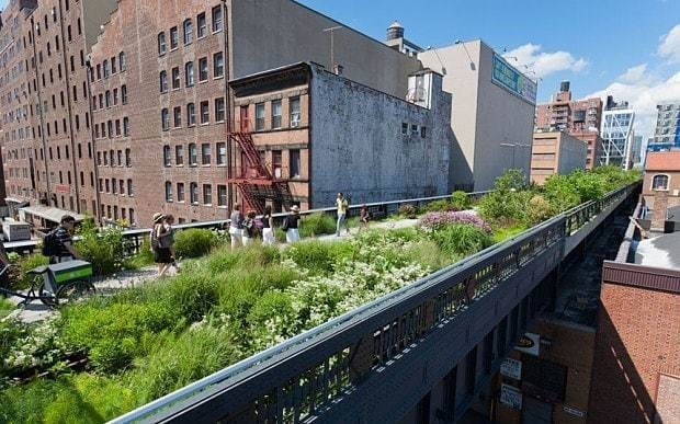 If you love green urban spaces, shout it from the rooftops