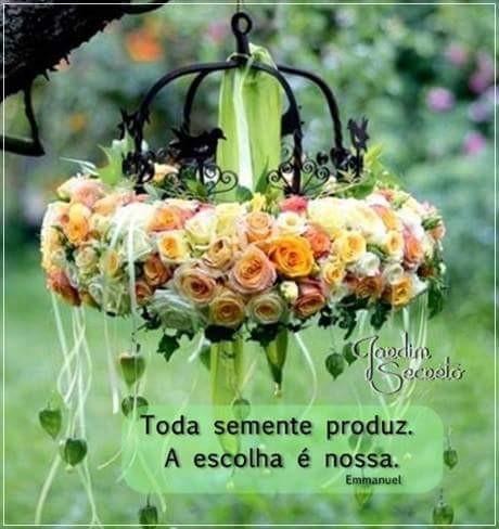 Projeto Beija Flor. - Magazine cover