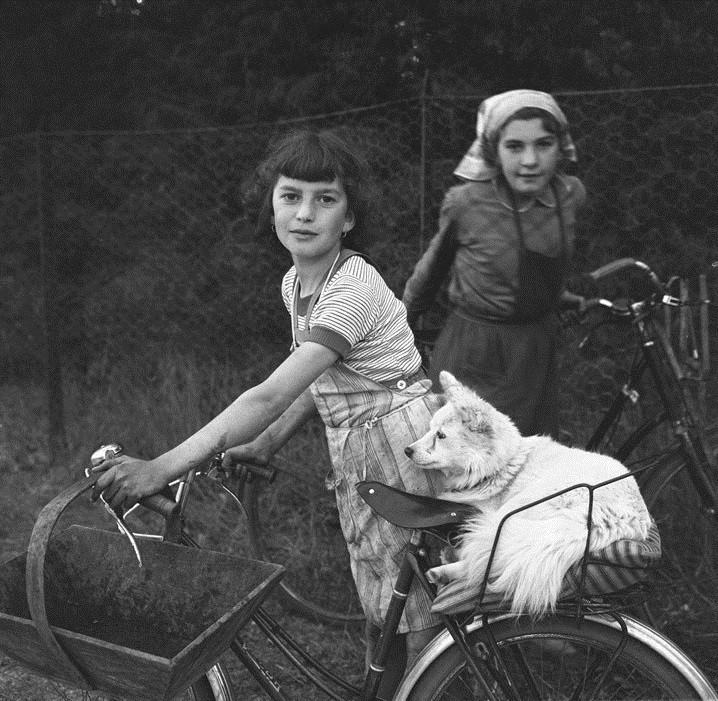 """viola 🌸 """"Wine harvest girls"""" - France 1957 - by Peter Miller"""