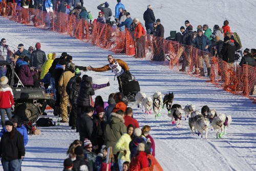 Mush! The Iditarod Starts in Alaska: Pictures