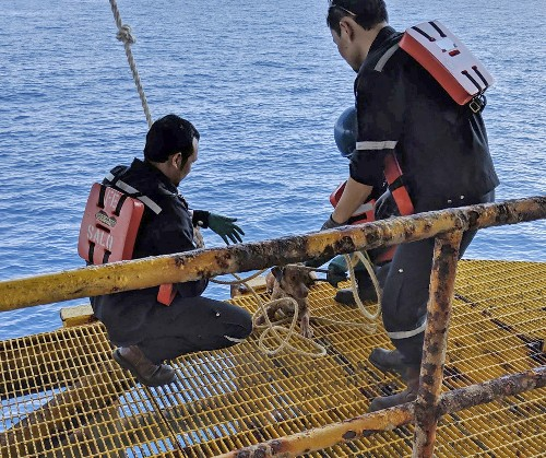 Thai oil rig workers rescue dog swimming 135 miles offshore