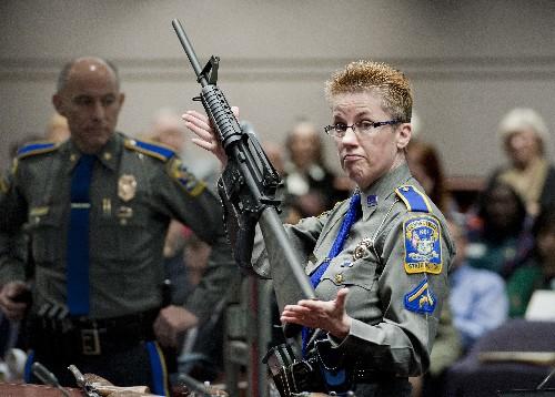 States, politicians back gun-maker in Sandy Hook appeal