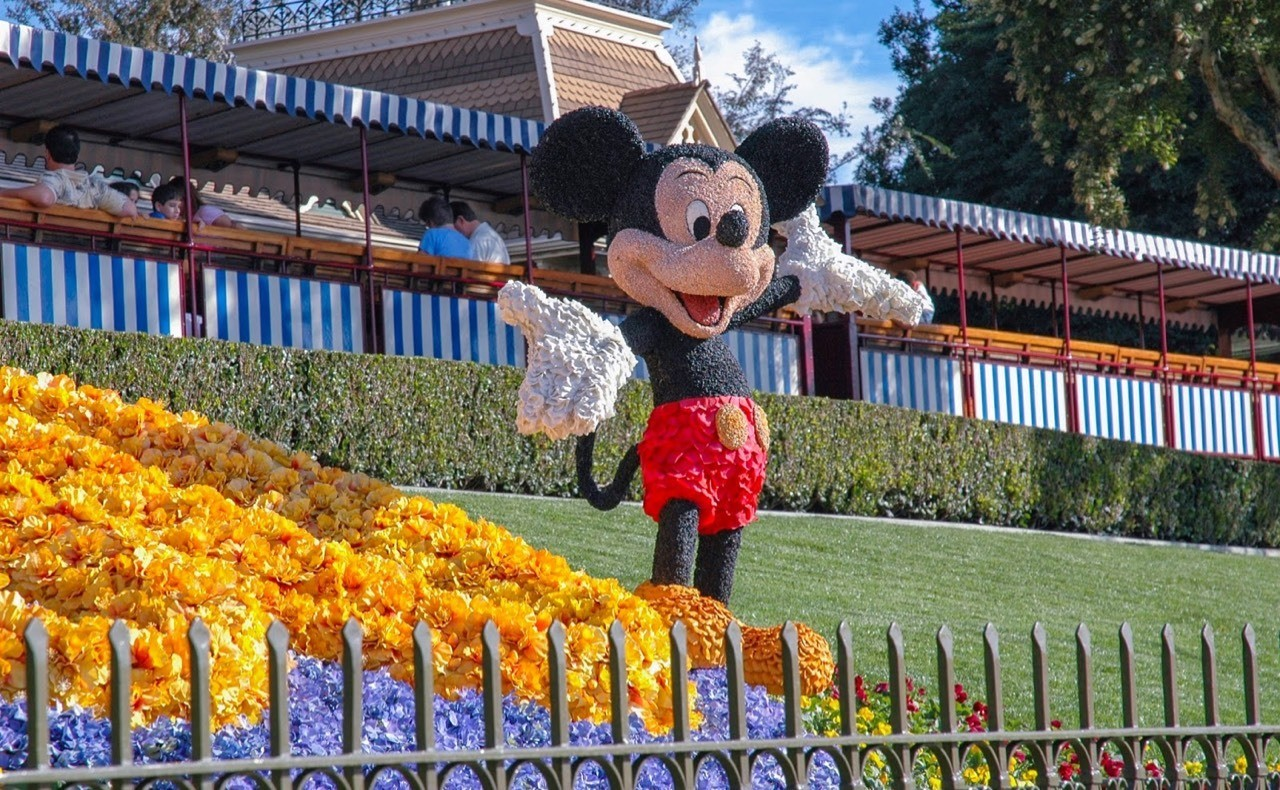 Daily Disneyland: From Disneyland's 50th Anniversary, Mickey Mouse at the front entrance in Flowers #disney #disneyland #mickeymouse